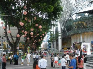 A crowd of people walk between buildings with mirrored sides and a line of trees with pink paper lanterns hanging from the branches.