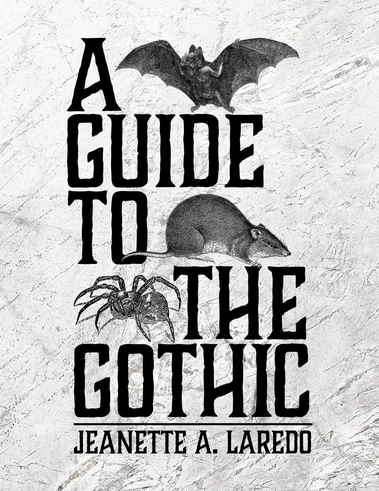 Cover image for A Guide to the Gothic