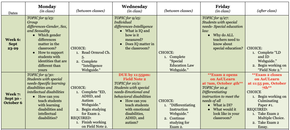 A schedule of two weeks' worth of activities both in class (three times a week sessions) and between classes.